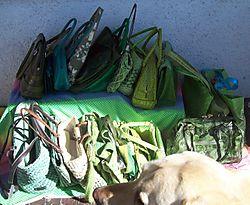 Bag Lady with Dog