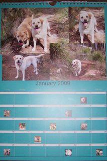 January's Calendar Page