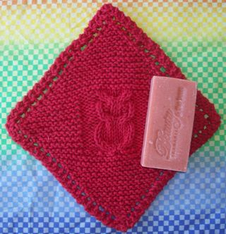 Owling Success Dishcloth