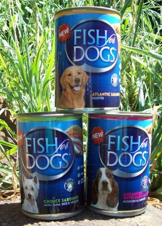 Fish, fish, fish