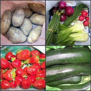 Farmers' Market Harvest