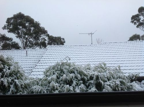 Snow at mum's house