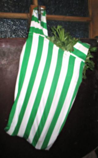 Celery bag #111