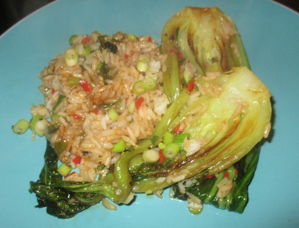 2paw Friday Food Hoisin Pak Choi Rice