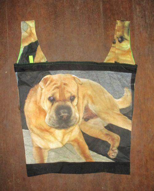 Archie bag #80