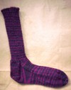 One_professor_plum_sock