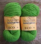 Kiwi_green_eco