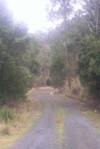Harkis_long_and_winding_road