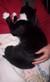 Starsky_loves_teddys_mum_1